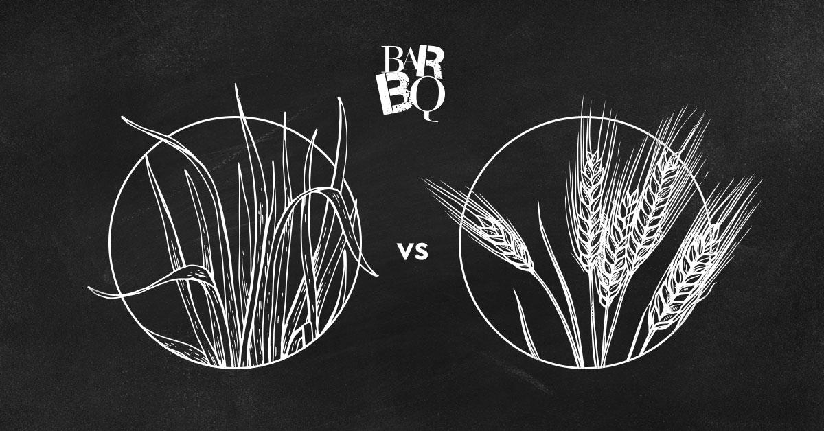 Grass fed vs Grain fed beef: ποιές οι διαφορές τους και ποιό να επιλέξω;